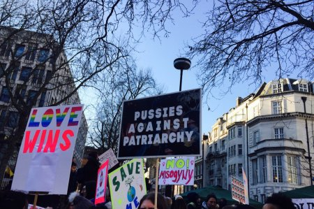 Pussies Against Patriarchy placard - Anita Sethi.jpg